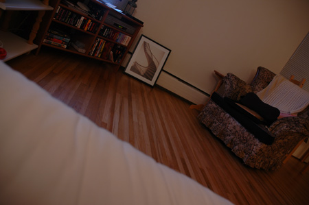 my_nightly_view.jpg